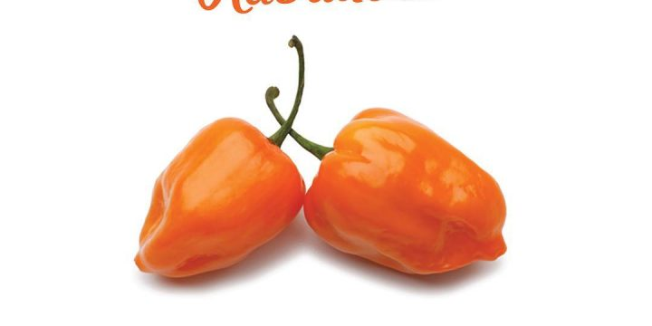 15 Proven Health Benefits of Eating Habanero Pepper